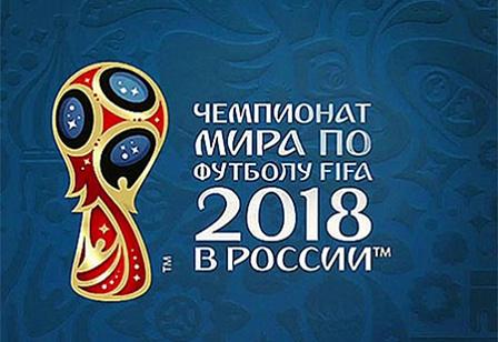 Безвизовый въезд в Россию для зрителей ЧМ-2018 одобрен сенаторами